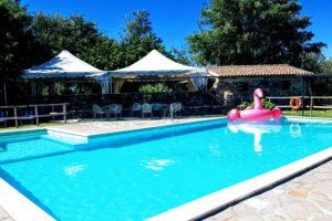Schwimmbad mit rosa Flamingo